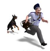 Postman dog